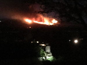 Gratefullane Fires - Wine Grapes from Fire - Vineyard Fires in CA